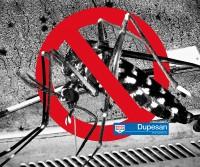 Cómo eliminar los mosquitos de tu coche